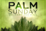 Message from PalmSunday