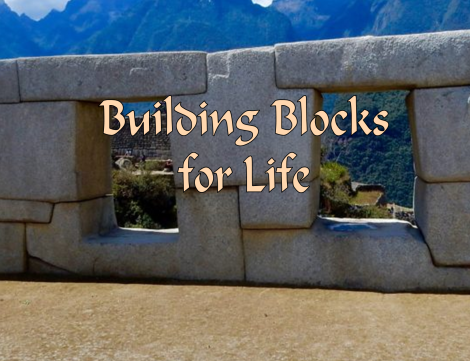 Building Blocks for Life